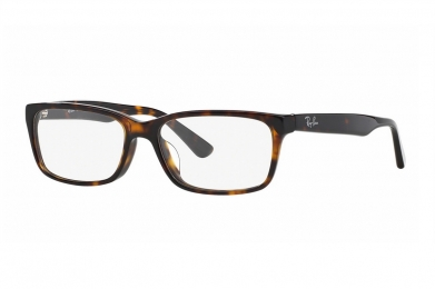 RAY-BAN RB5296D F-RAY 5296D-2012(55CN)